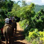 象に乗るトレッキングツアーに参加